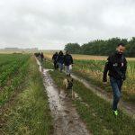 Balade canine à Longueville