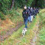Promeneurs et chiens sous la pluie