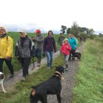 Promenade canine en famille dans le Brabant wallon