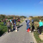 Balade canine à la mer organisée par Julie Willems, comportementaliste canin