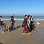 Chiens et maitres en promenade sur la plage