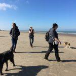 Promenade le long de l'eau pour maitres et chiens