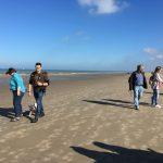 Bouledogue français profitant de l'ombre de son maitre sur la plage