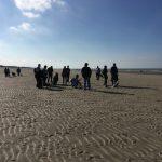 Promeneurs accompagnés de leur chien qui profitent de la marée haute