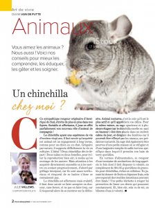 soin d'un chinchilla