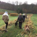 Maitres et chiens en route vers le bois