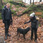 Rottweiler en promenade dans les bois