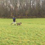 Maître et chien courant dans un champ
