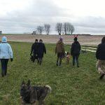 Sortie canine sur les terrains de campagne