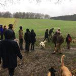 Bergers Suisses en balade dans les champs