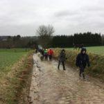 Maîtres et chiens sillonnant les routes campagnardes