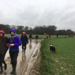 Excursion canine sous la pluie