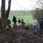 Sortie canine sur des terrains boisés