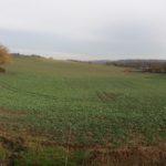 Joli paysage campagnard