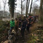 Balade forestière pour les chiens et leur maître