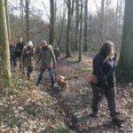 Promeneurs et chiens se frayant un chemin à travers les arbres