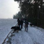 Promeneurs accompagnés de leur chien marchant dans la neige