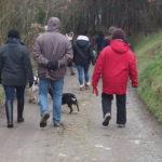 Balade pour chiens organisée par Julie Willems, comportementaliste chien