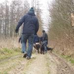 Balade pour chiens organisée par Julie Willems, comportementaliste chiens