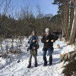 Chien-loup tchécoslovaque et Bulldog anglais se baladant en forêt