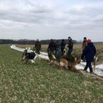 Balade canine encadrée par Julie Willems, comportementaliste canin