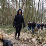 Balade pour chiens encadrée par Julie Willems, comportementaliste animalier