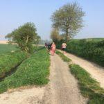 Randonnée avec les chiens dans la campagne