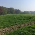 Magnifique paysage de campagne