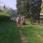Promenade sur un chemin herbé