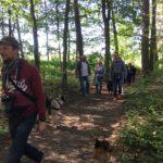 Maitres en compagnie des chiens et des arbres