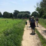 Excursion canine sur des sentiers campagnards