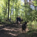 Bergers dans la forêt avec leur maître