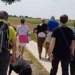 Rottweiler, Malinois et Beage avec leur maitre