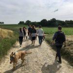 Malinois et randonneurs sur une route pavée