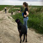 Maître et chien en observation
