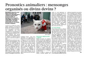 Chat devin