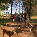 Malinois et Chien Loup devant un groupe de randonneurs