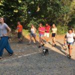 Boston Terrier devant ses maîtres et d'autres chiens