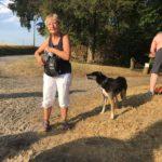 Pause pour maîtres et chiens