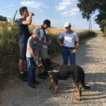 Rottweiler qui boit de l'eau à la bouteille