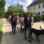 Rottweiler qui marche à gauche de sa maitresse