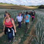 Promeneurs qui marchent dans des champs
