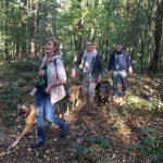 Maîtres et chiens dans les bois