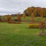 Joli paysage rencontré en balade canine