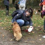 Petit chien croisé Corgi avec sa maîtresse