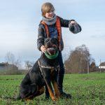 Rottweiler accompagné de son maître