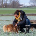 Interaction entre le maître et son petit chien
