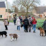 Boxer et chiens de berger dans la rue