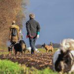 Groupe promenade maîtres-chiens