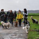 groupe de randonnée dans les champs